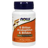8 Billion Acidophilus & Bifidus 60 φυτοκάψουλες - Now / Ενζυμα Προβιοτικά