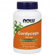 Cordyceps 750mg 90 κάψουλες - Now / Ειδικά Προϊόντα