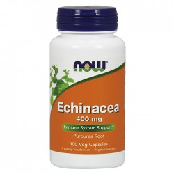 Echinacea Root 400mg - 100caps NOW Foods / Εχινάκεια - Κρυολόγημα