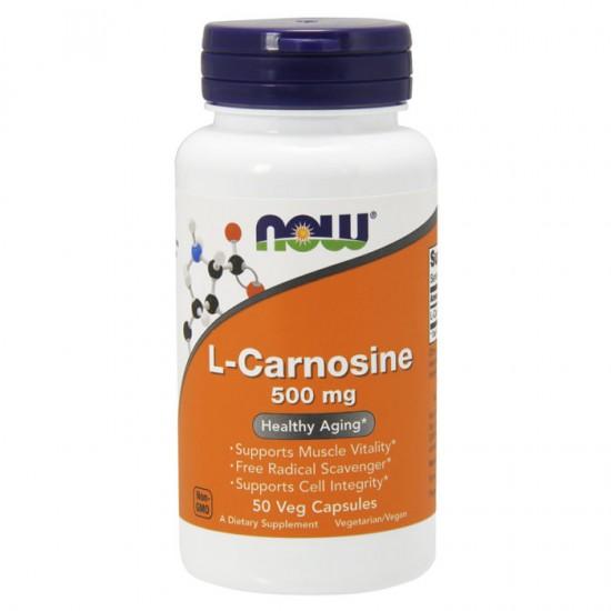 L-Carnosine 500mg 50 φυτοκάψουλες - Now / Αμινοξέα
