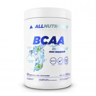 BCAA Max Support Instant 2:1:1 500gr - All Nutrition