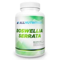 Boswellia Serrata 90 caps - AllNutrition