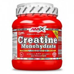Creatine Monohydrate 500gr - Amix / Μονοϋδρική Κρεατίνη