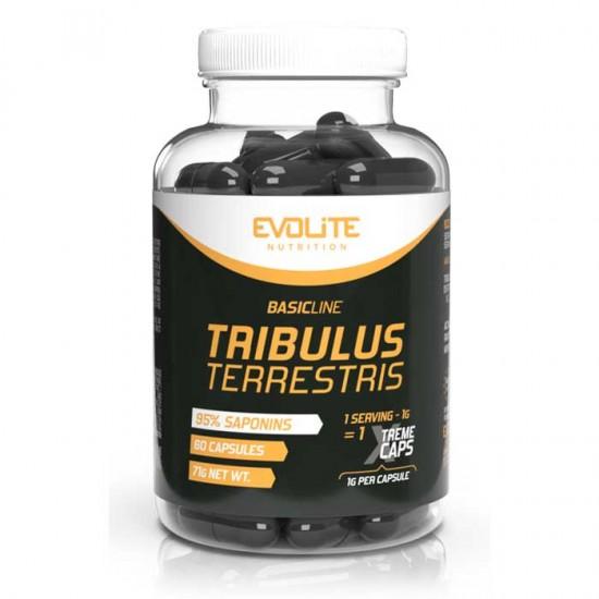 Tribulus Terrestris 60 caps - Evolite