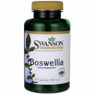 Boswellia 100 κάψουλες - Swanson / Αρθρώσεις